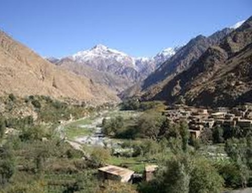 Excursion to Valley of Ourika